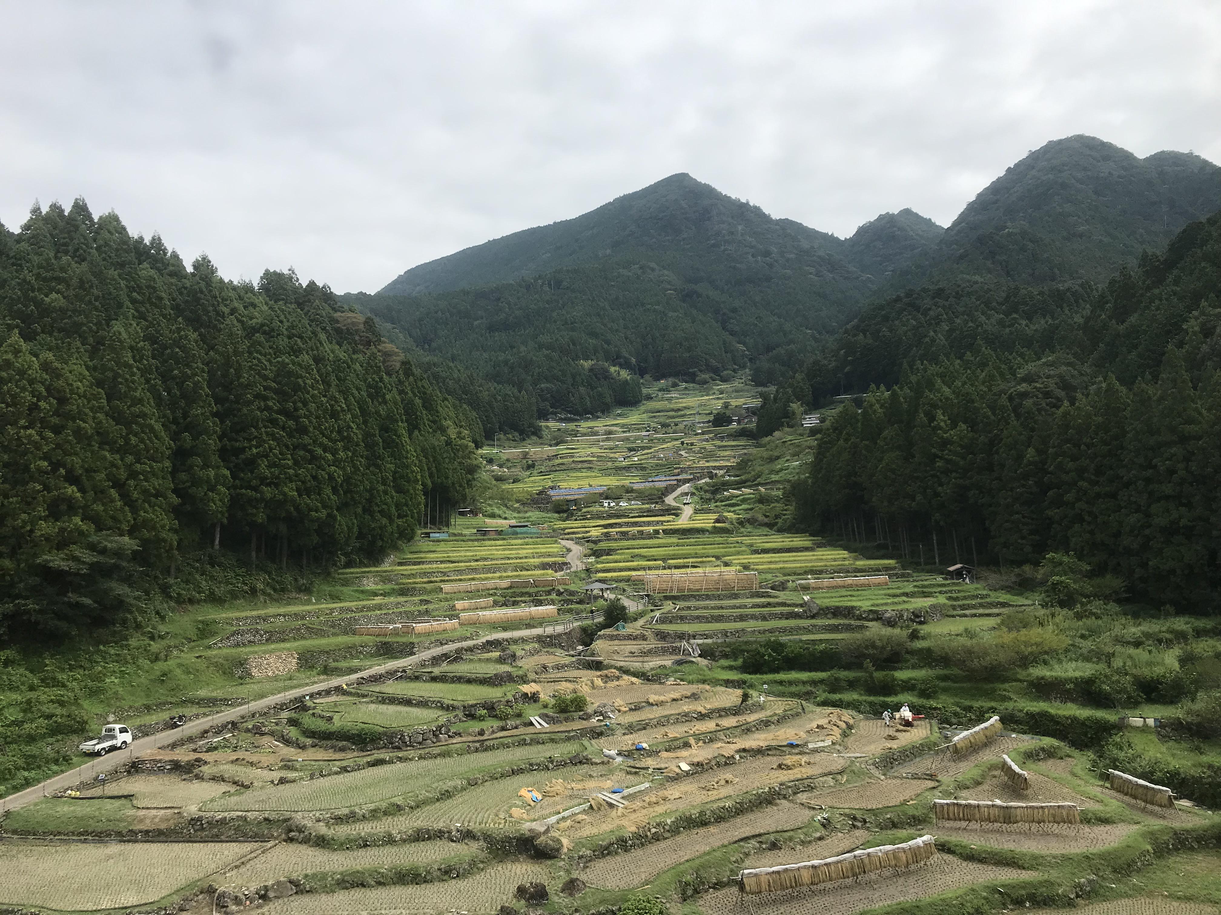 愛知の千枚田へツーリング!神奈川では見れない景色に感動!